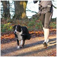 Trixie Dog Activity öv pórázzal, zsebekkel közepes testű kutyáknak