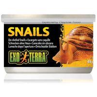 Exo Terra Snaits – Puhára főzött csigák hüllőknek