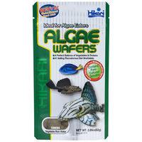 Hikari Tropical Algae Wafers | Trópusi algaostya algaevő fajok részére