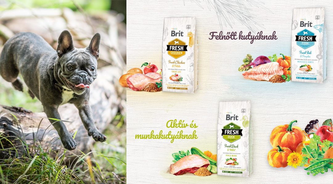 Brit Fresh tápok felnőtt kutyáknak