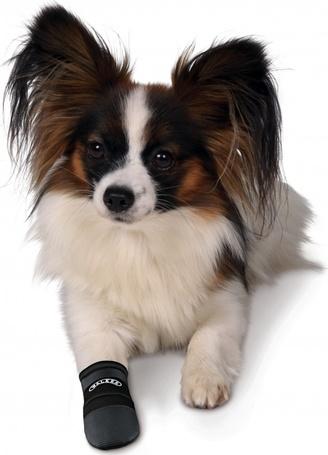 Kutyacipő Walker Care S 2db/Csomag