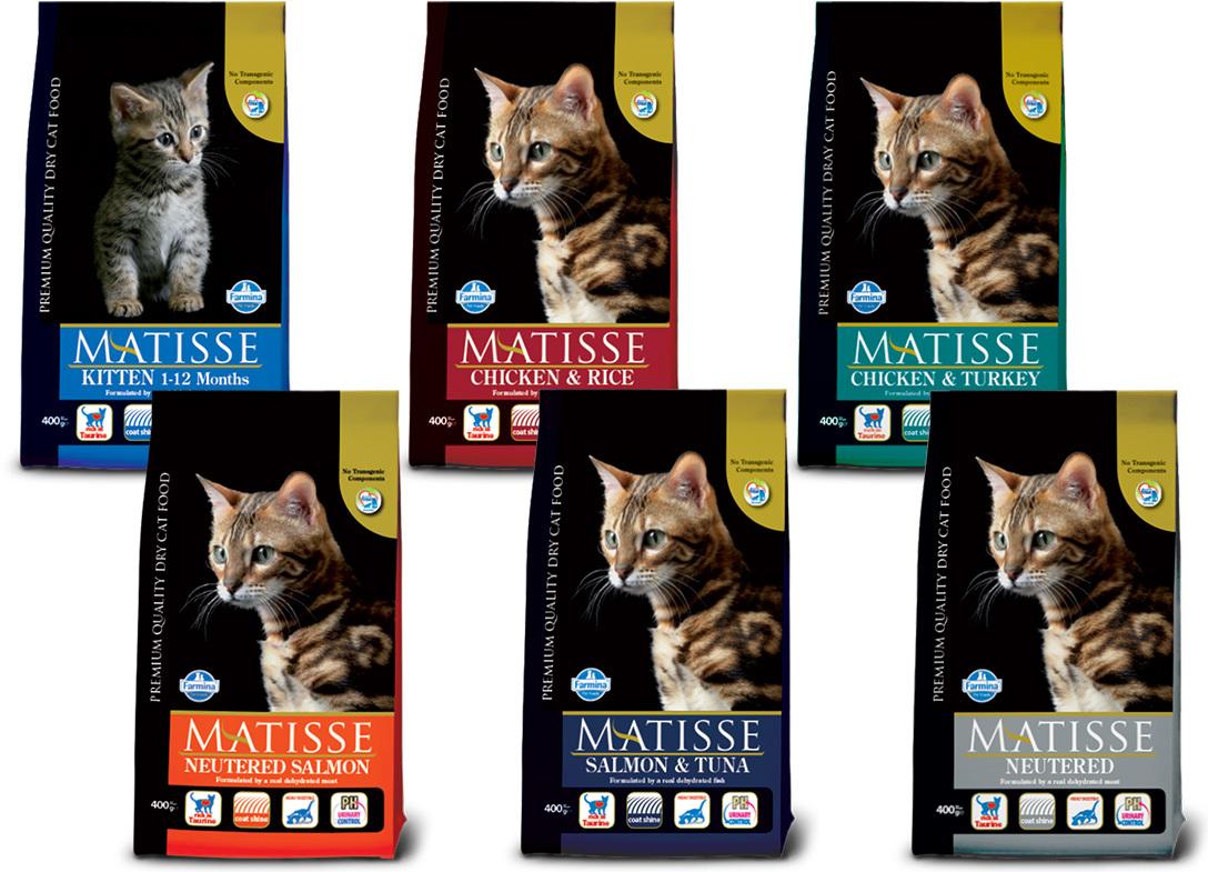 Matisse macskaeledelek