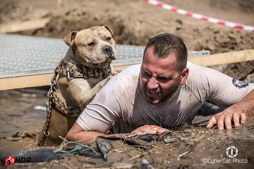 Hard Dog Race   Paros kuzdelem a gyozelemert