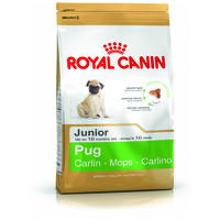 Royal Canin Pug Junior