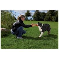 Trixie DogActivity apportrúd természetes gumiból