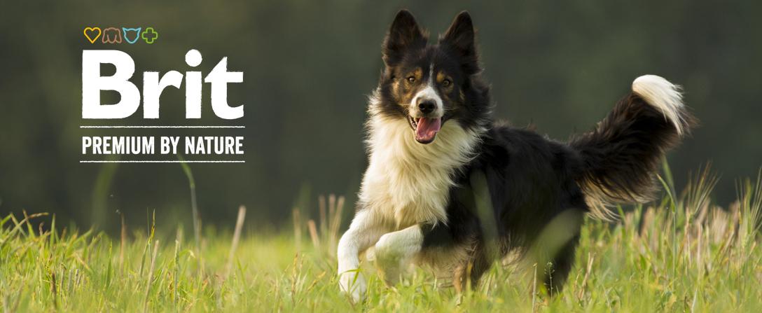 Brit Premium by Nature kutyatápok az Okosgazdi webáruházban
