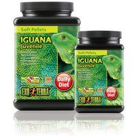 Exo Terra Iguana Juvenile