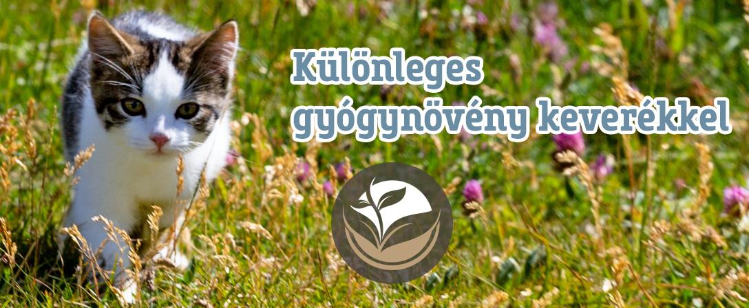 Spirit of Nature Dog konzervek macskáknak különleges gyógynövények hozzáadásával