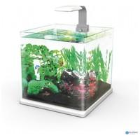 Hailea Q-15 nano akvárium szett