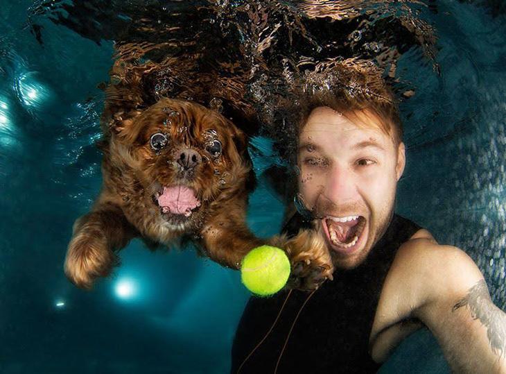 Seth Casteel és négylábú kedvencünk a vízben