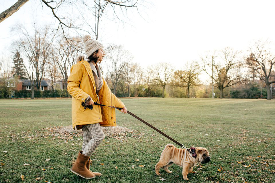 Kutyasétáltatás   Egészséges testmozgás