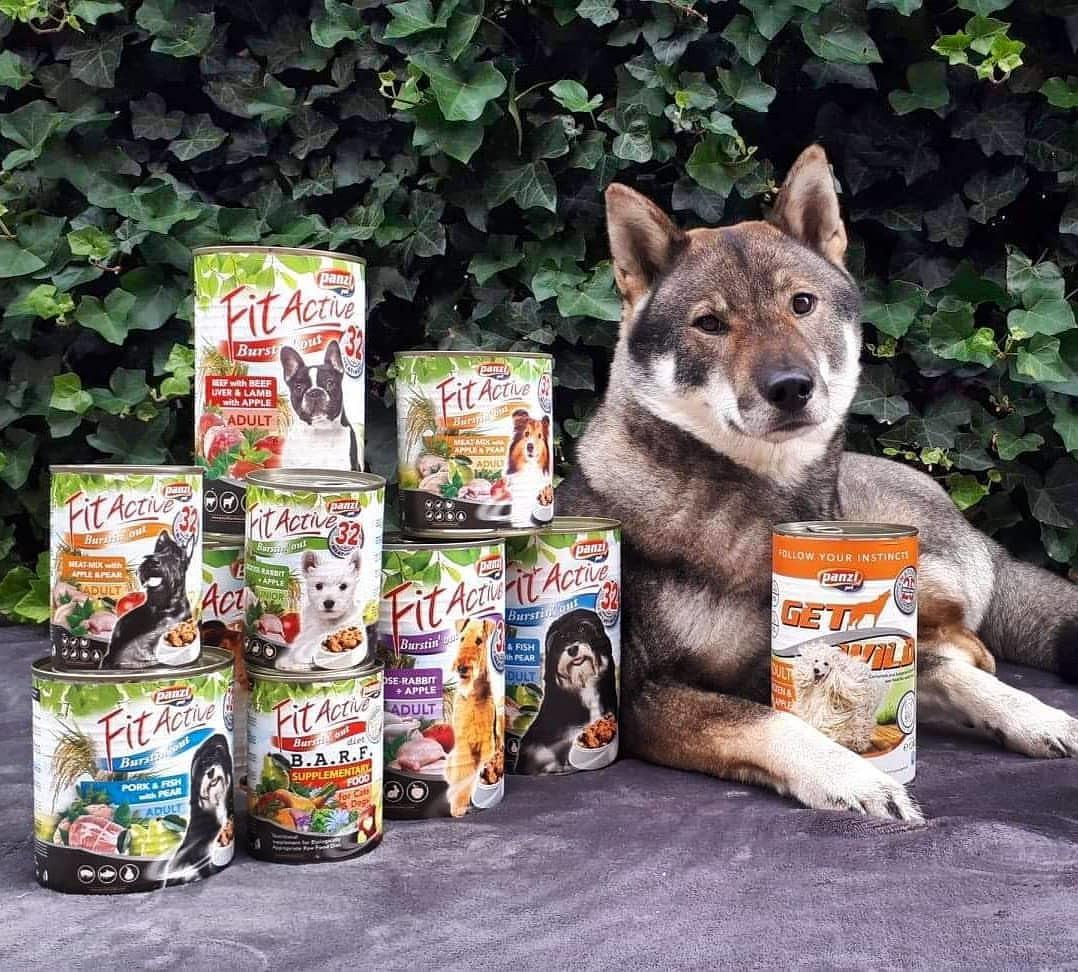 Panzi FitActive és Panzi GetWild konzerves eledelek kutyáknak