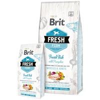 Brit Fresh Fish with Pumpkin Adult Large Muscles & Joints | Friss hallal és sütőtökkel | Nagytestű kölyökkutyáknak