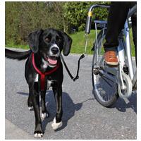 Trixie biciklis szett nagy testű kutyának
