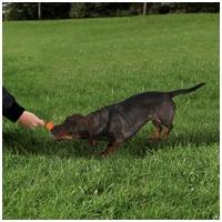 Trixie Dog Actvity MOT gumi harang rövid kötéllel