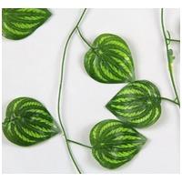 Görögdinnye leveleket mintázó műnövény