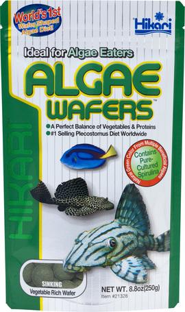 Hikari Tropical Algae Wafers   Trópusi algaostya algaevő fajok részére