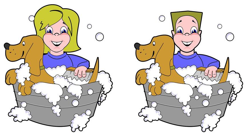 Kutyus fürdetése