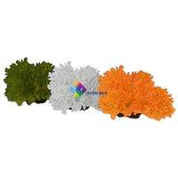 Tányér korall akvárium dekoráció