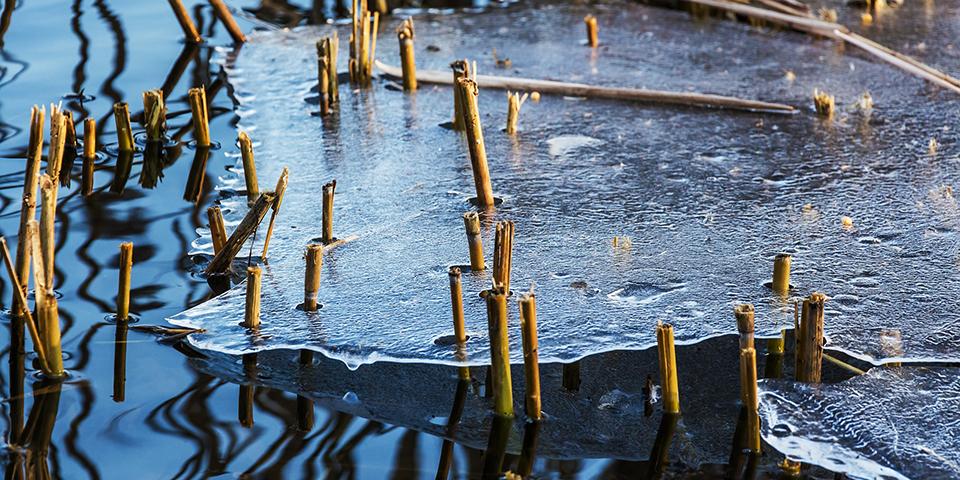 Még részlegesen befagyott kerti tó