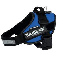 Julius-K9 IDC kék powerhám kutyáknak