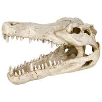 Trixie krokodil koponya akvárium dísz