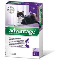 Advantage 80 spot on macskáknak és nyulaknak