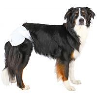 Kutya pelenka