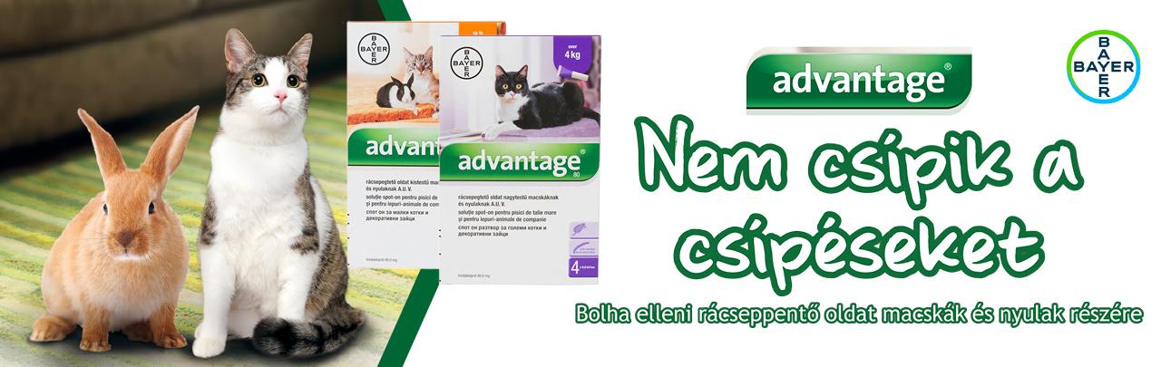 Advantage - Nem csípik a csípéseket - Bolha elleni rácseppentő oldat macskák és nyulak részére a német Bayer gyógyszergyártól