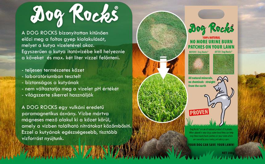 Dog Rocks ismertető