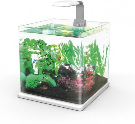 Hailea Q-25 nano akvárium szett