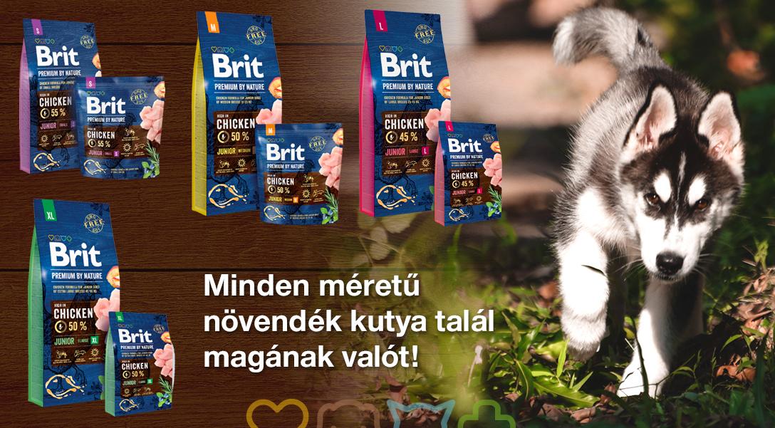 Brit Premium tápok junior korú kutyáknak