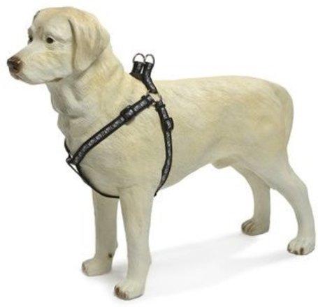Beeztees mancsmintás kutyahám