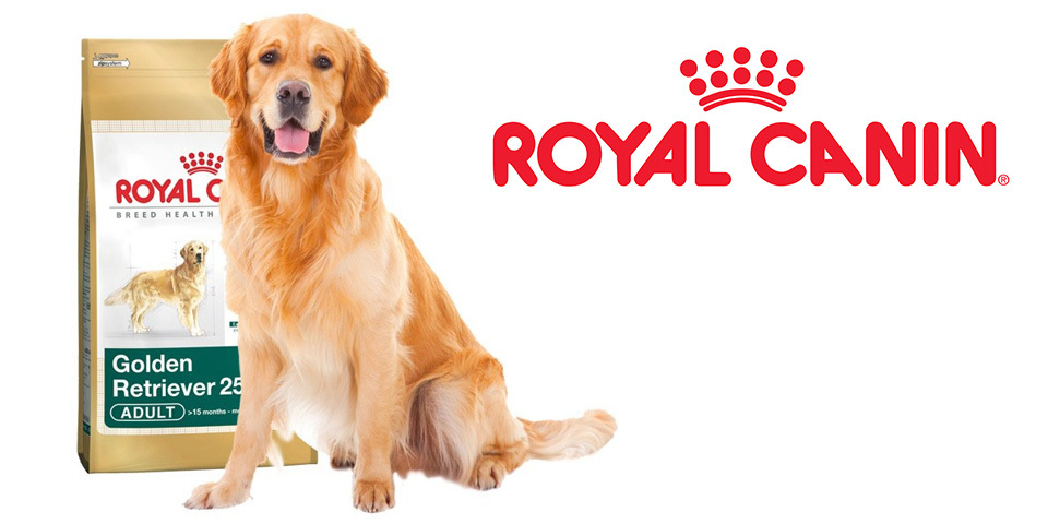 Royal Canin Golden Retriever fajtaspecifikus táp