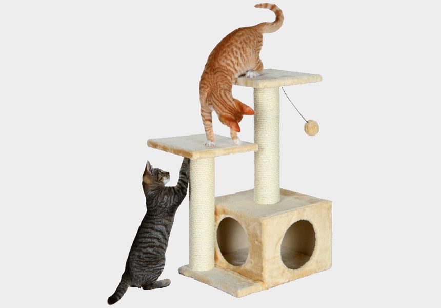Kaparófás macskabútor játéklabdával