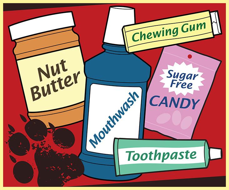 Kutyára veszélyes cukormentes termékek