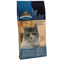Chicopee Cat Adult Indoor