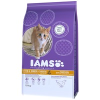 Iams Cat Kitten & Junior Chicken | Csirkehúsos táp kiscicáknak