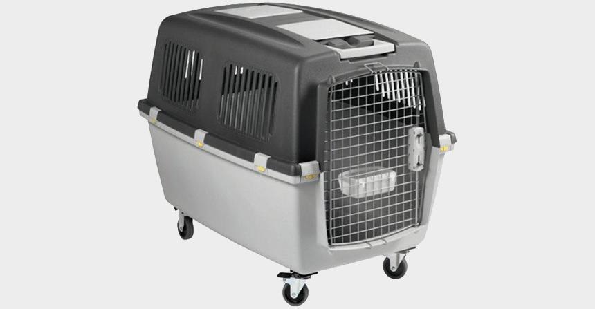 Szállítóbox kutyák részére
