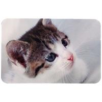 Trixie tál alátét macskafotóval