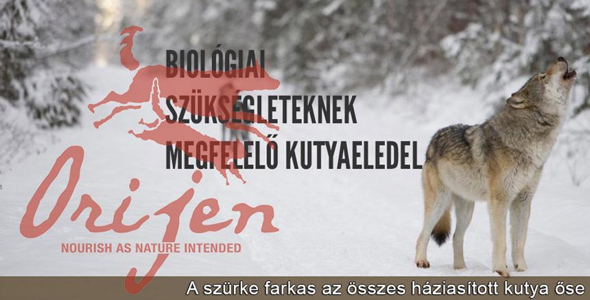 Orijen kutyaeledel jellemzői