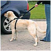 Trixie biztonsági öv + hám kutyáknak és macskáknak
