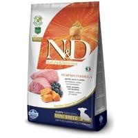 N&D Dog Grain Free Puppy Mini sütőtök bárány & áfonya | Kutyatáp kistestű kölyköknek | Kis tápszemcse méret