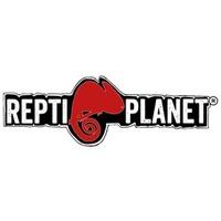 <p>Repti Planet</p>