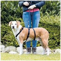 Trixie szökésbiztos masszív tartó hám kutyáknak