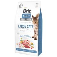 Brit Care Large Cats Power & Vitality Fresh Duck & Chicken hipoallergén táp friss kacsa- és csirkehússal nagytestű macskáknak | Gabona- és gluténmentes