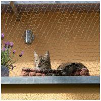 Fekete védőháló erkélyre cicáknak