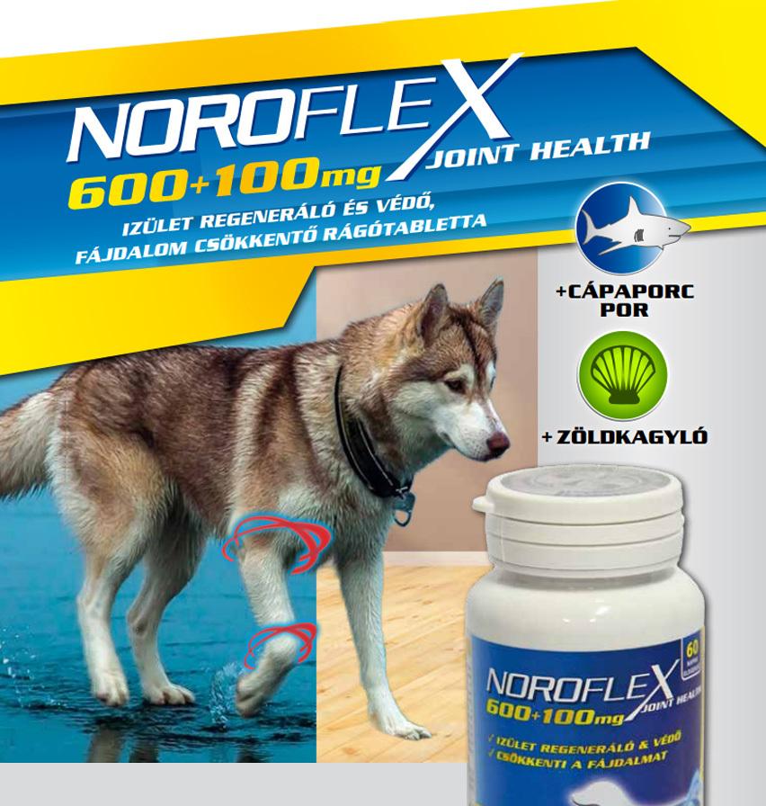 NorofleX ízületregeneráló és fájdalomcsökkentő táplálékkiegészítő rágótabletta kutyáknak