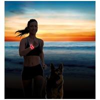 Trixie Safer Life világító csattos nyakörv vagy kézpánt kutyasétáltatóknak