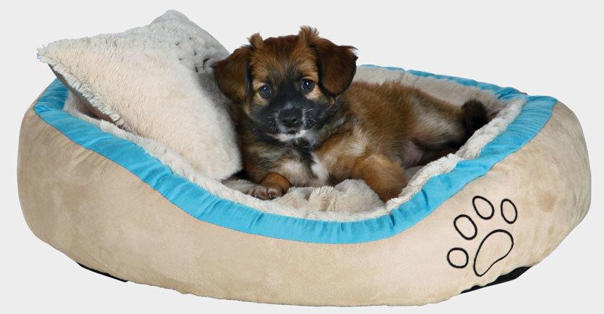 Trixie Bonzo kutyaágy
